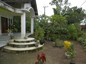 Nano Homestay, Homestays  Licin - big - 5