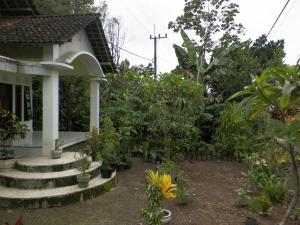 Nano Homestay, Homestays  Licin - big - 15