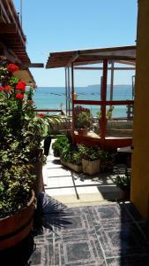 Departamentos Mar y Sol, Апарт-отели  Los Vilos - big - 7