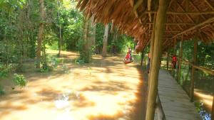 Avatar Amazon Lodge, Chaty  Santa Teresa - big - 59