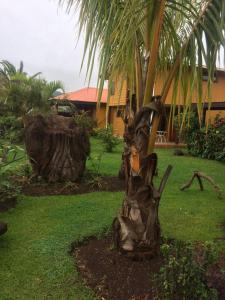 Cabañas Hinariru, Holiday homes  Hanga Roa - big - 74
