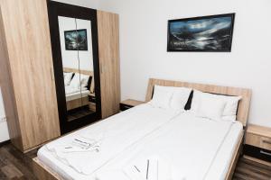 Grand'Or Home Loft, Ferienwohnungen  Oradea - big - 63