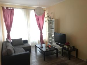 Romantic Old Town Apartment, Ferienwohnungen  Vilnius - big - 35