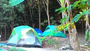 Mae Pom Homestay, Гостевые дома  Ban Muang - big - 27