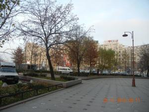 Apartament Piata Alba Iulia, Апартаменты  Бухарест - big - 22