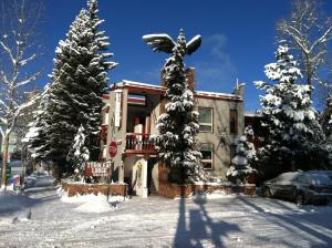 Tyrolean Lodge - Hotel - Aspen