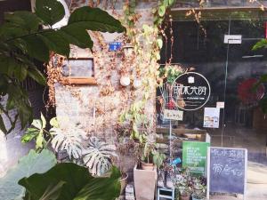 Good Dog Youth Hostel, Hostely  Kanton - big - 1