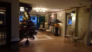 DM Residente Hotel Inns & Villas, Hotels  Angeles - big - 118