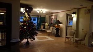 DM Residente Hotel Inns & Villas, Hotels  Angeles - big - 120