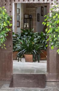 obrázek - Casa Palacio de los Leones