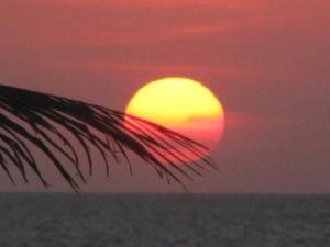 Seaway 935, Ferienwohnungen  Cartagena de Indias - big - 35