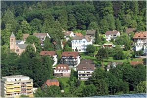 Hotel Fidelitas, Penziony  Bad Herrenalb - big - 36