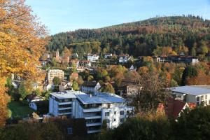 Hotel Fidelitas, Penziony  Bad Herrenalb - big - 34