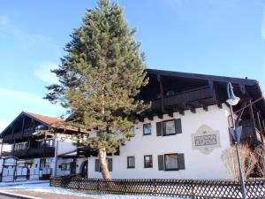 Alpina 21 - Apartment - Inzell