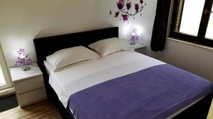 Guesthouse Perica