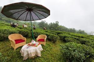 Ging Tea House