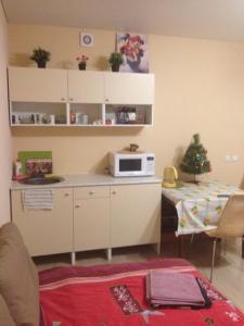 Apartment on Kosmonavtov 61
