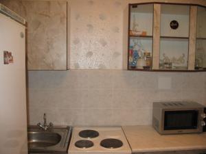 Apartment on Nevskaya