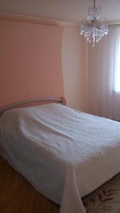 Апартаменты Суворова - фото 5
