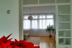 Apartment Solis - фото 16