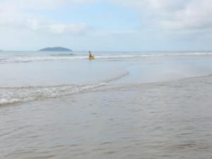 APARTAMENTO 3 ANDAR, FRENTE PARA O MAR, Ferienwohnungen  Ponta do Rei - big - 41