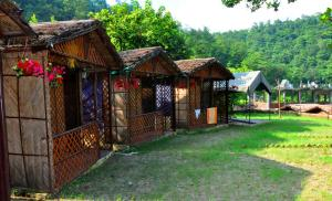Camping Experience in Rishikesh