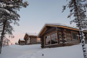 obrázek - Wilderness Hotel Muotka