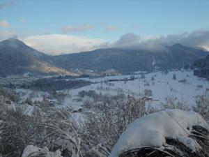 Albergo Alpina