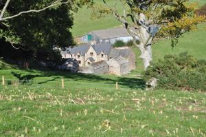 Coombe Farm, Bed and breakfasts  Lynton - big - 5
