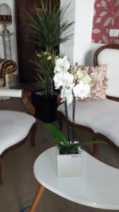 Hotel Bolognese Bellevue, Hotels  Riccione - big - 69