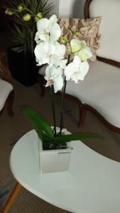 Hotel Bolognese Bellevue, Hotely  Riccione - big - 68