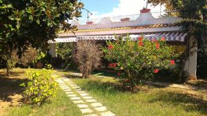 Villa Margherita, Holiday homes  Capo Vaticano - big - 7