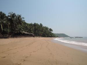 Blue Lagoon Resort Goa, Rezorty  Cola - big - 103