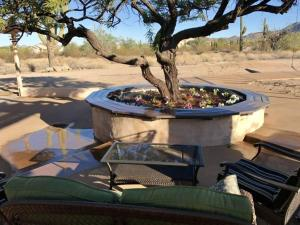 5 bedroom Desert 1960's Horse Property