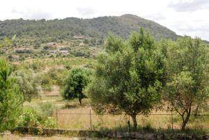 Villa Puig de Magdalena, Vily  Inca - big - 3