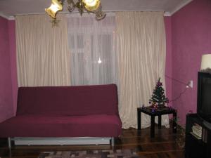 Apartment na Prospekt Bolshevikov 3
