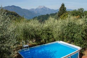 Lucca Country Rentals, Vendégházak  Coreglia Antelminelli - big - 56