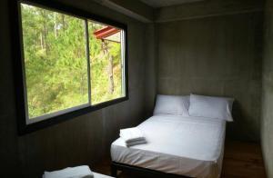 Coffee Heritage House and Hostel, Ostelli  Sagada - big - 18