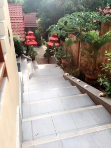 Komodo Lodge, Privatzimmer  Labuan Bajo - big - 27