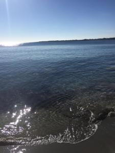 Oasi sul Mare