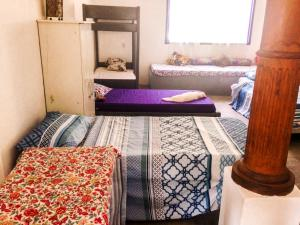 obrázek - Camping Hostel Mangue Arts