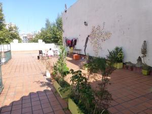 Habitaciones Piso compartido Palermo