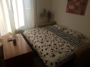 Studio Apartment Ena S - фото 4