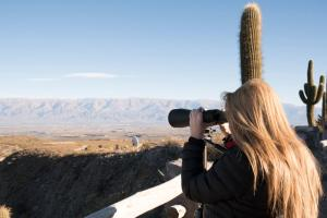 Observatorio Ampimpa, Pensionen  Amaichá del Valle - big - 15