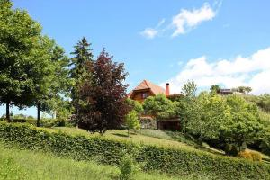 Holiday Home Gornja Voca 11873