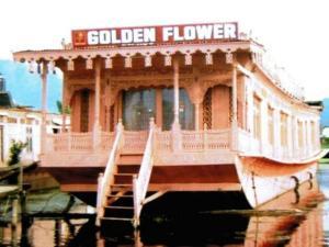 HB Golden Flower