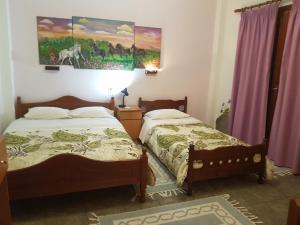 obrázek - Sofia Rooms