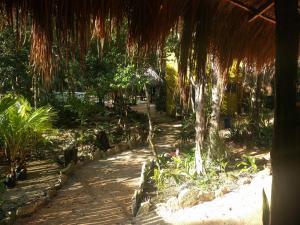 Casa Corazon de Jaguar