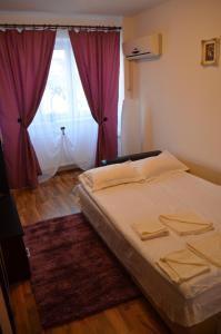 Apartament Daniel Fratila, Apartmány  Sibiu - big - 7