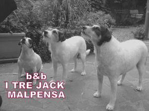 I Tre Jack Malpensa